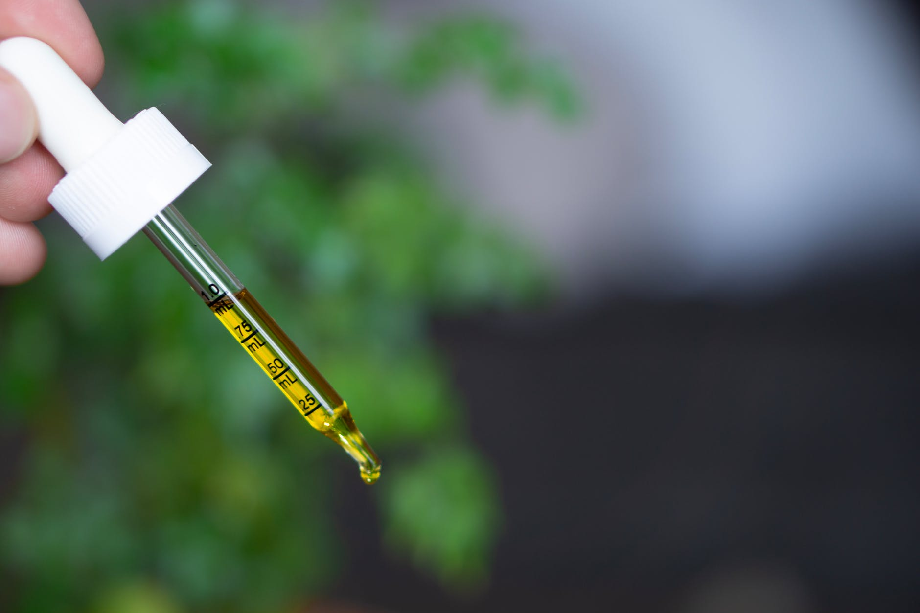 CBD Oil from Holland and Barrett – Is It Worth It? Hemp Product Review